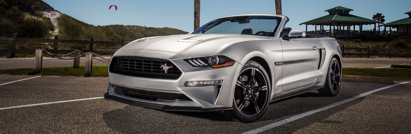 Silver 2019 Ford Mustang parked in front of park