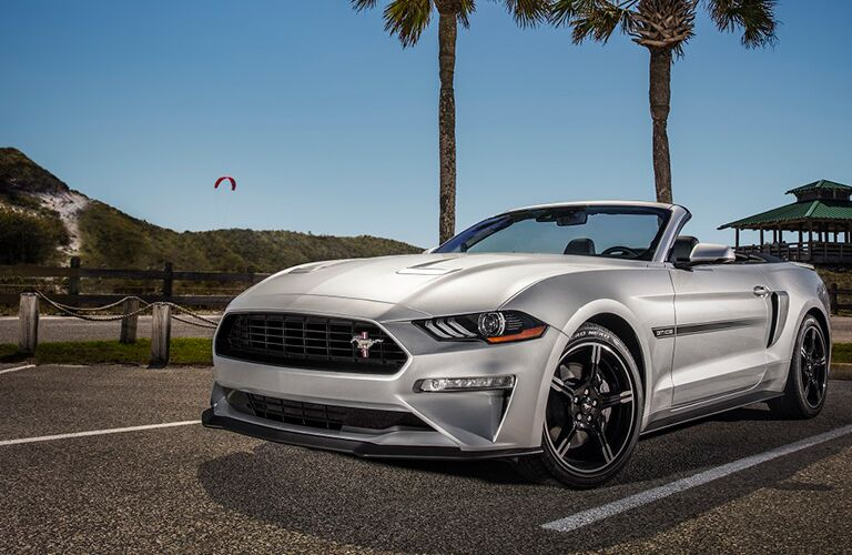 silver 2019 ford mustang in front of two palm trees