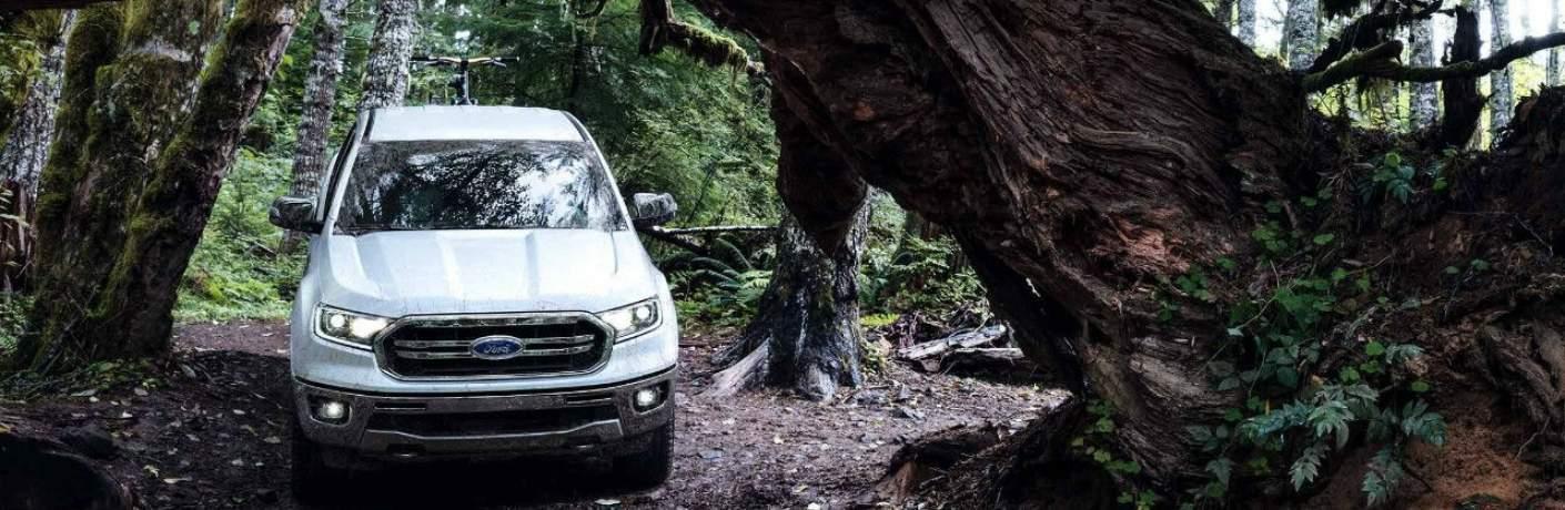 2019 Ford Ranger Driving Through a Tree