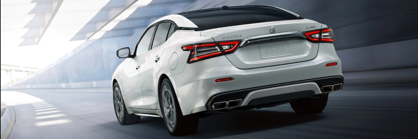 rear of white 2020 Nissan Maxima