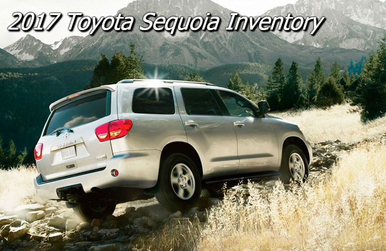 new toyota sequoia for sale in knoxville tn
