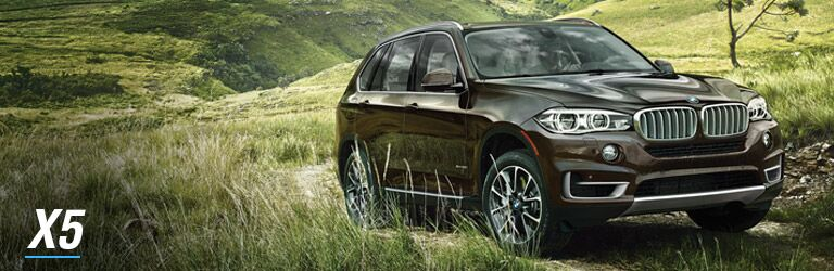 You May Also Like BMW X5
