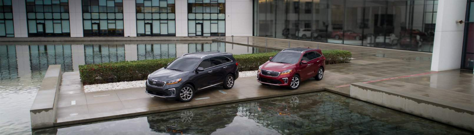 Two 2019 Kia Sorento models near a pool downtown