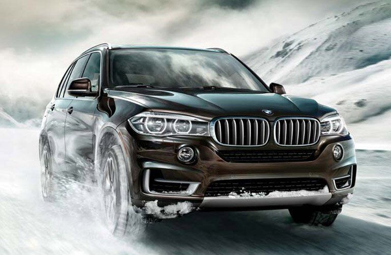 Used BMW X5 Series in the snow
