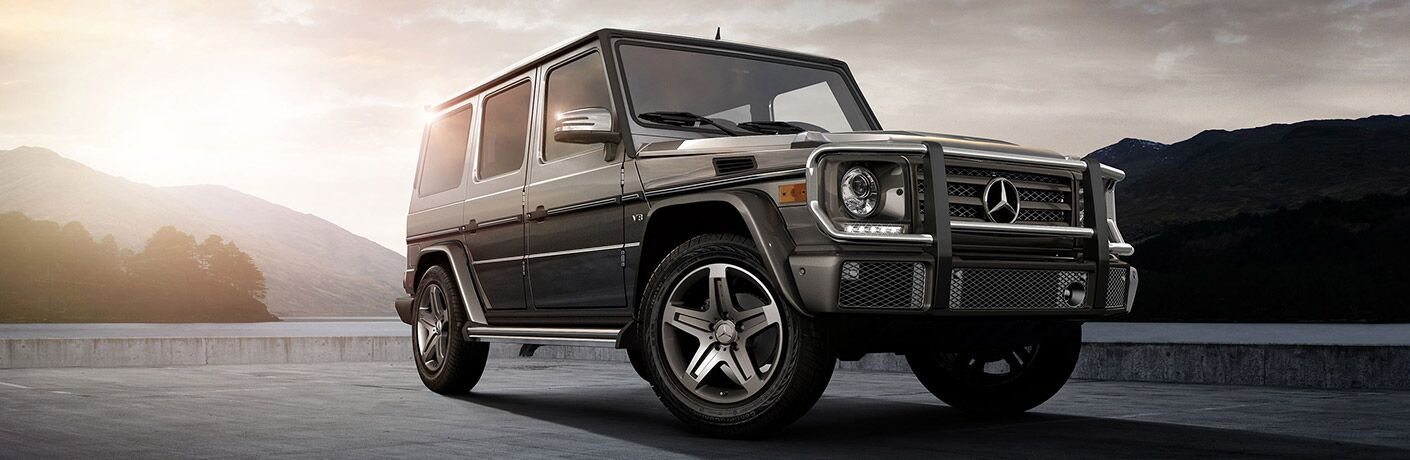 2017 Mercedes-Benz G-Class Chicago IL