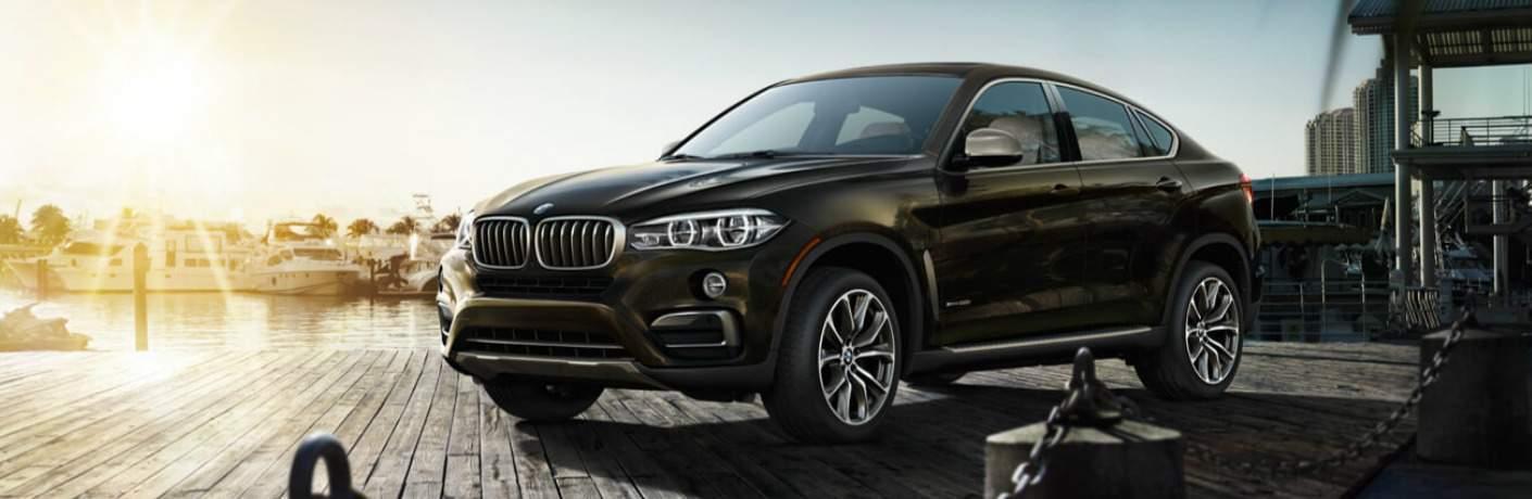 Dark Brown 2018 BMW X6 Parked on a Dock