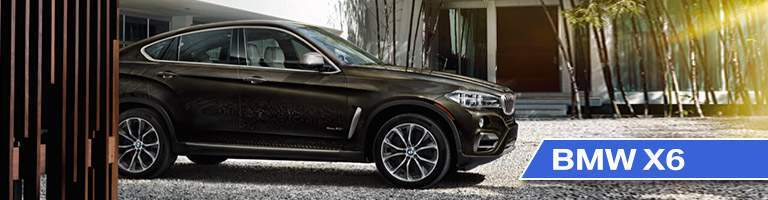 Side View of 2018 BMW X6 with Dark Brown Exterior