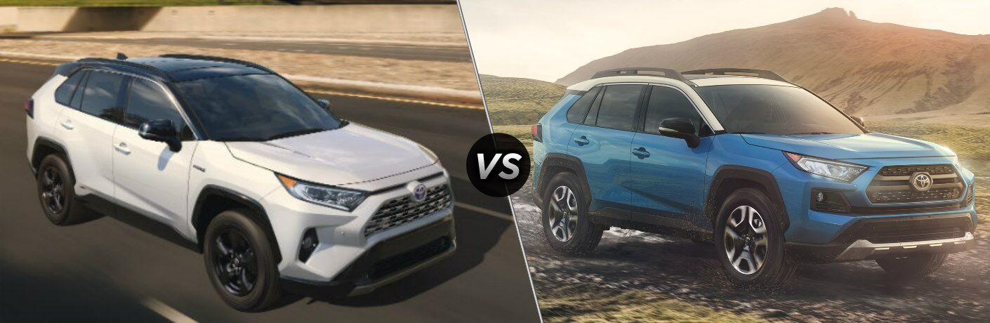 White and Blue 2019 Toyota RAV4 models side by side