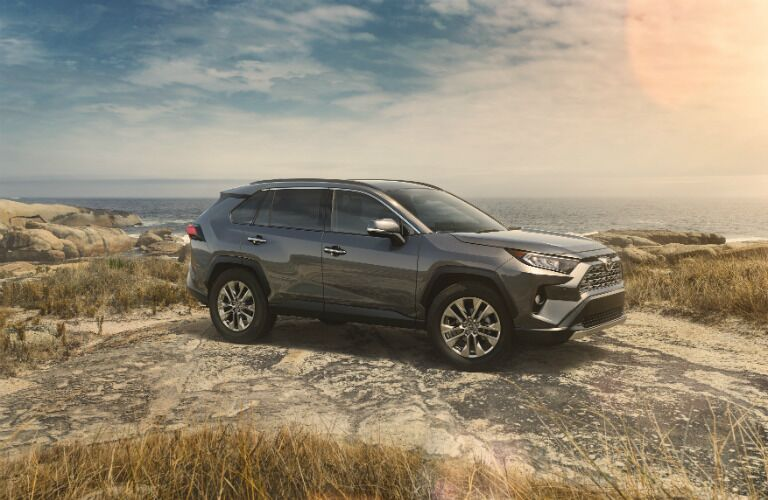 Grey 2019 Toyota RAV4 parked on top of cliff