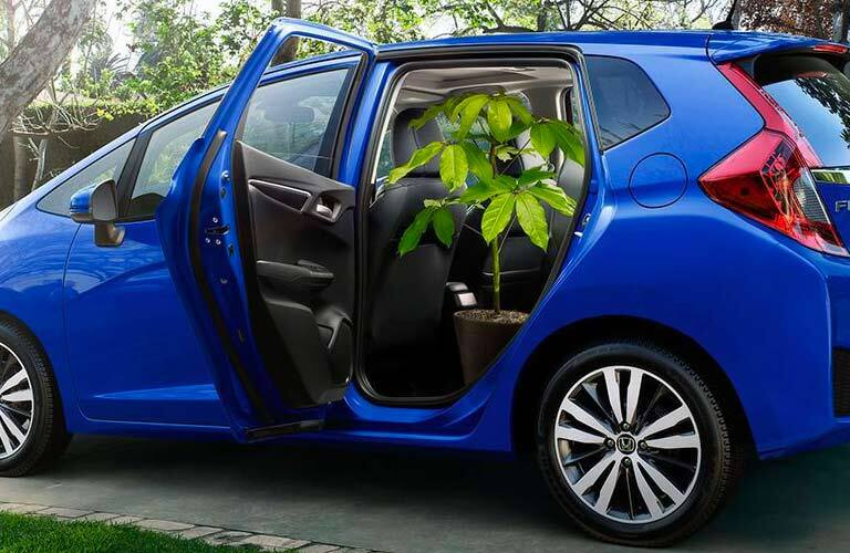 2017 Honda Fit EX-L with a potted plant in the rear seat