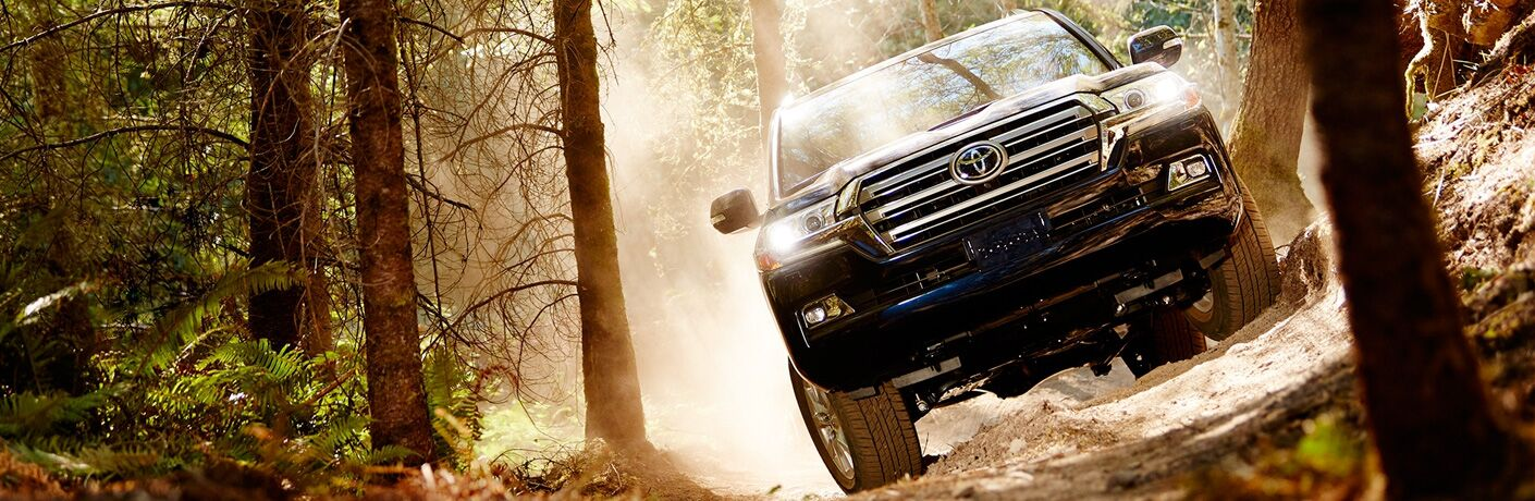 2019 Toyota Land Cruiser in a forest