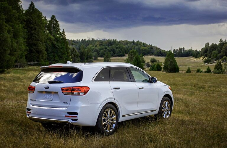white 2016 Kia Sorento in a field