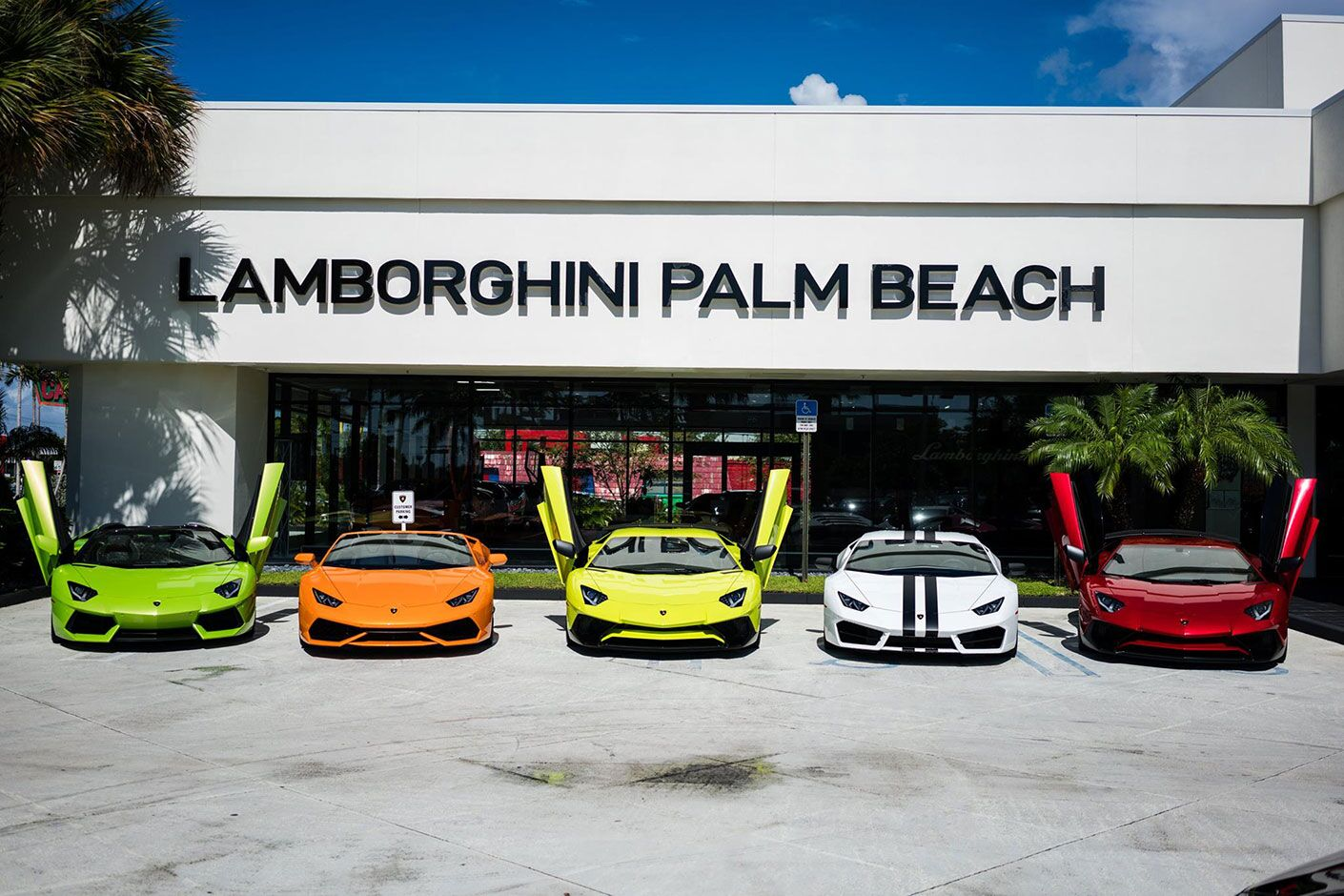 Jaguar Palm Beach Motor Cars About Lamborghini Palm