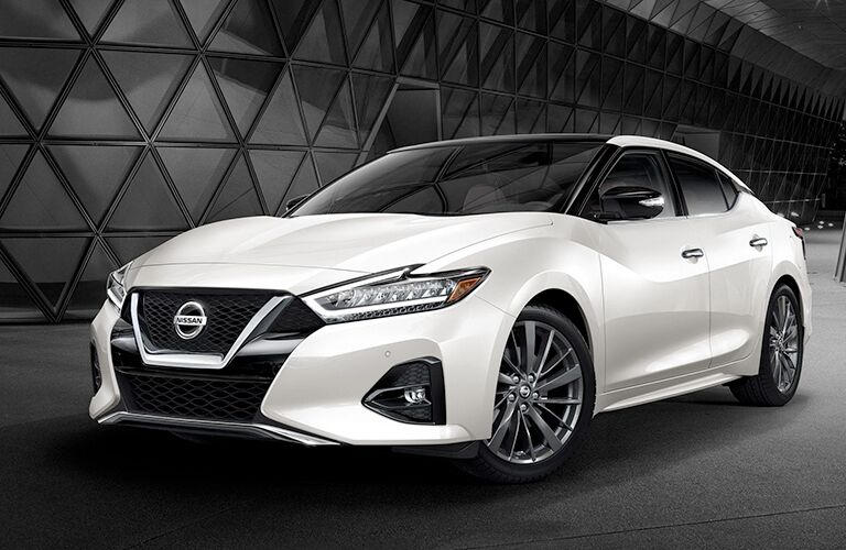2019 Nissan Maxima white parked in black area with glass building behind