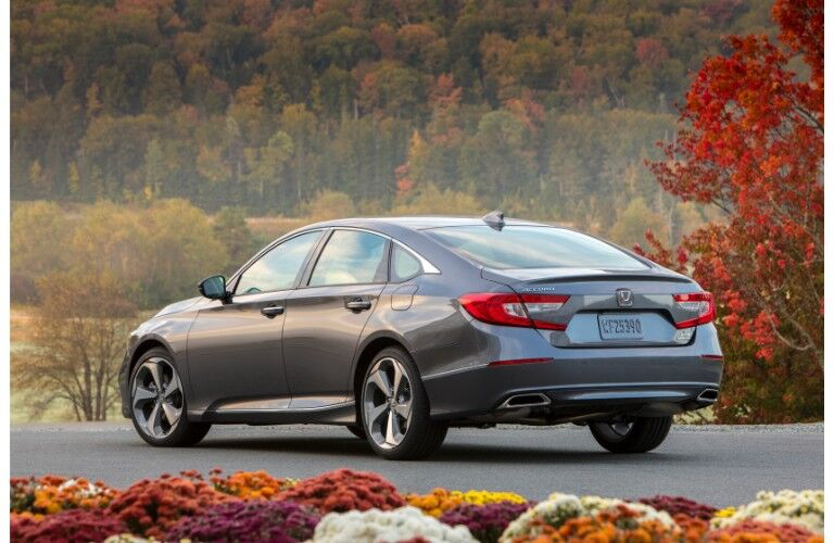 2019 Honda Accord Touring exterior rear shot with dark gray paint job parked near an autumn forest with a garden of flowers