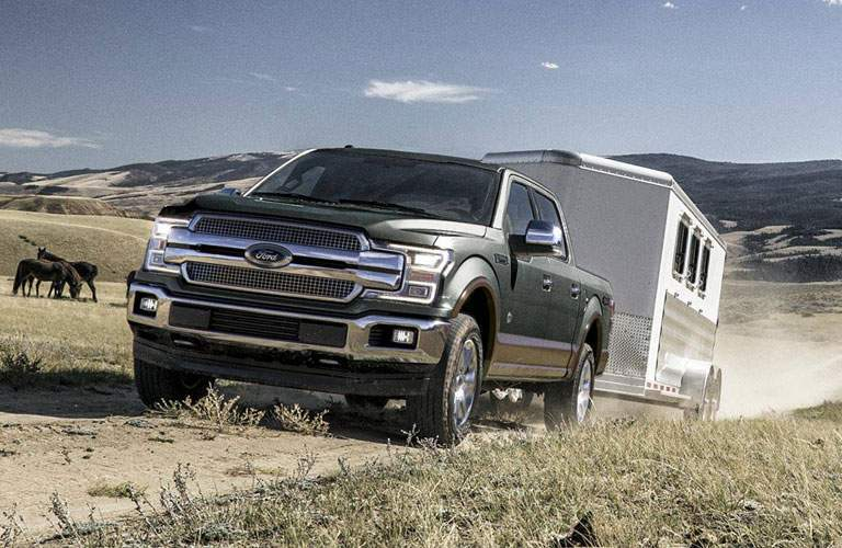 2018 Ford F-150 driving with a trailer through a field with horses