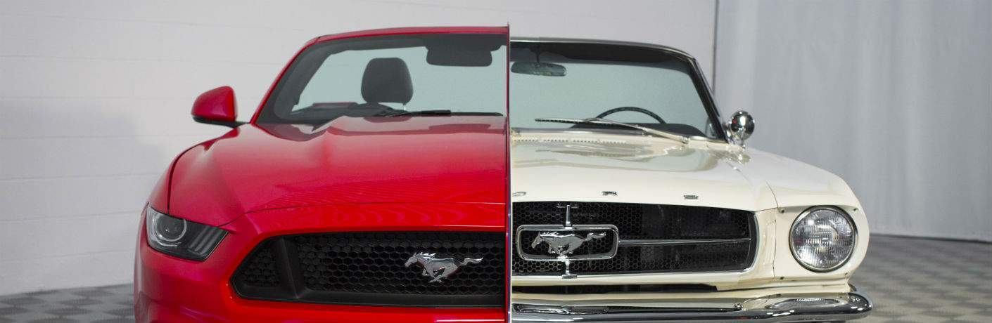 Used Ford Mustang in Gainesville, GA
