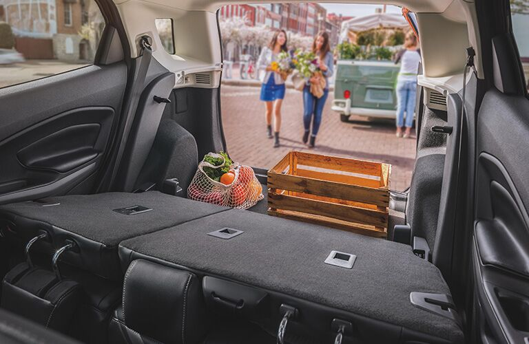 A crate and a bag of fruit in the cargo area of a 2020 Ford EcoSport