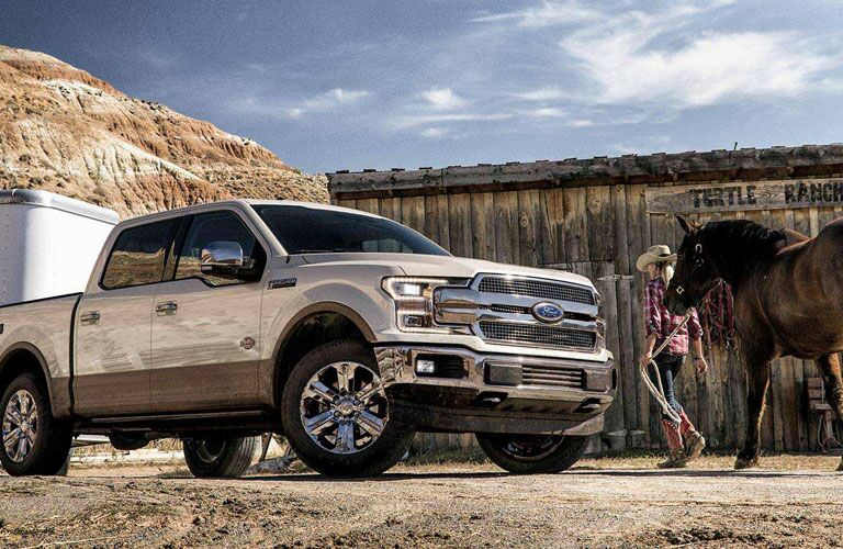 2018 Ford F-150 next to horse