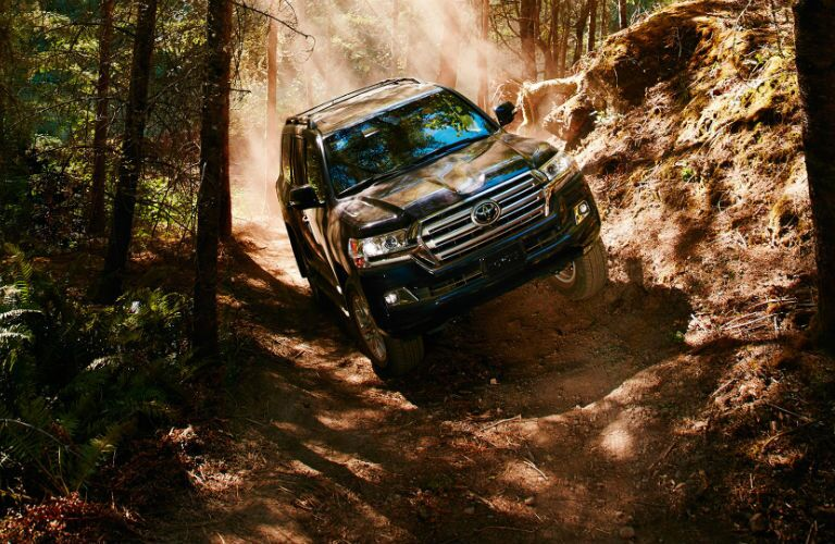 2019 Toyota Land Cruiser on an off-road forest trail