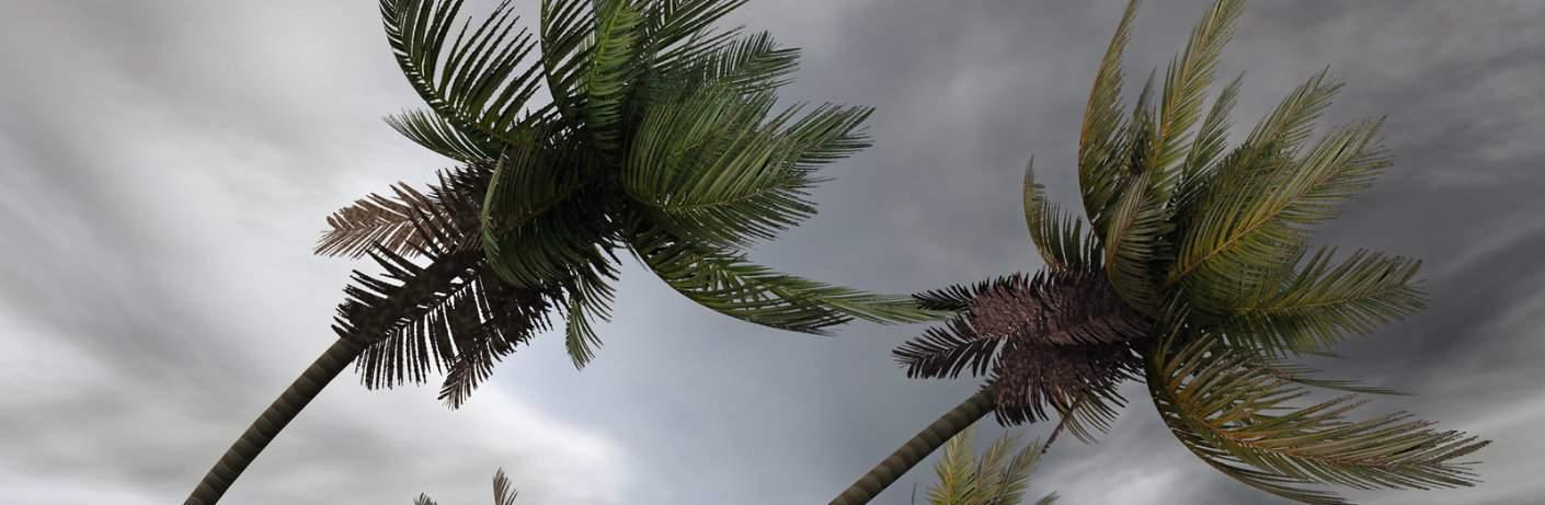 Toyota Hurricane Relief Incentive Near Hialeah, FL