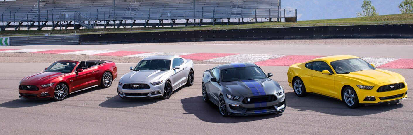 Red, Silver, Gray and Yellow 2017 Ford Mustang Models Parked on a Track