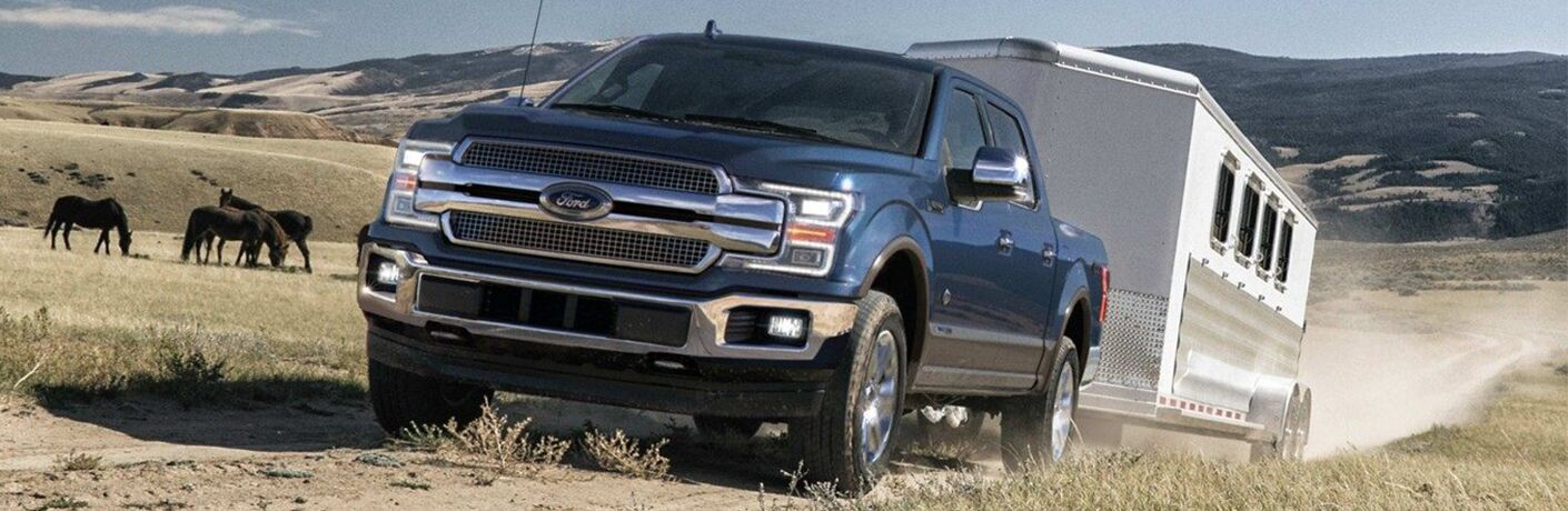 Blue 2019 Ford F-150 Towing a Horse Trailer in a Field