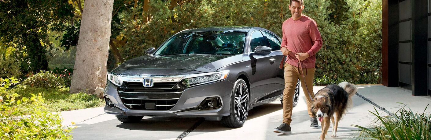 Man and Dog with Gray 2021 Honda Accord Hybrid in a Driveway