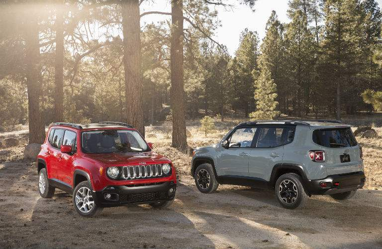 Billion Auto Group customers have lots of choices available with the 2017 Jeep Renegade