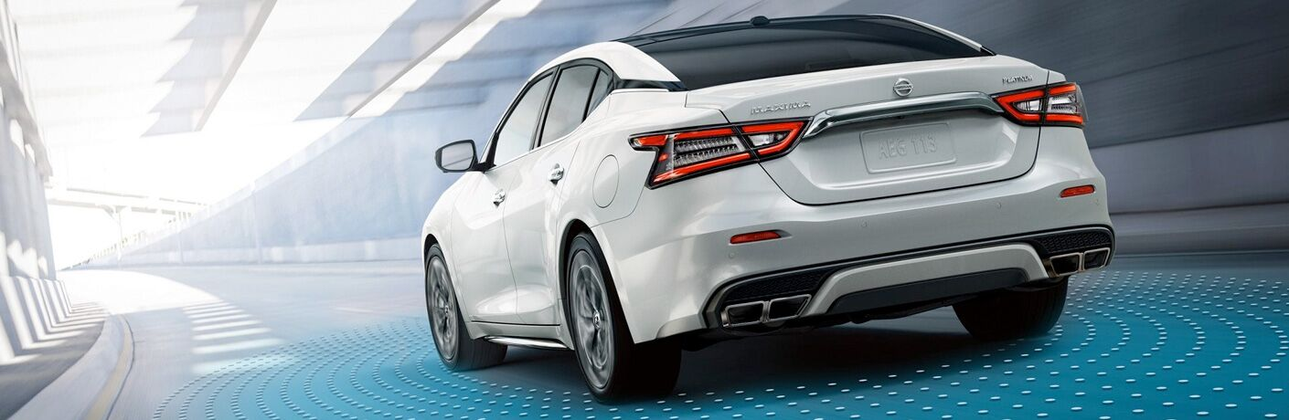 2019 Nissan Maxima Rear View of White Exterior