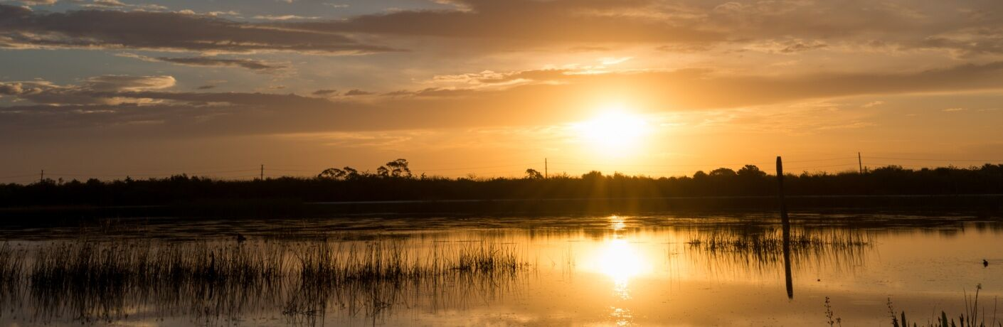 Viera Florida wetlands at sunset