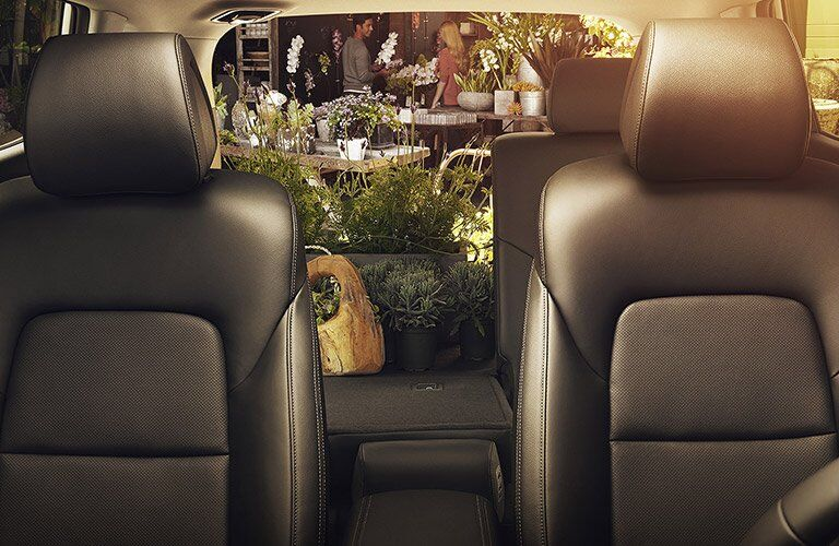 2017 Hyundai Tucson carrying flowers and plants