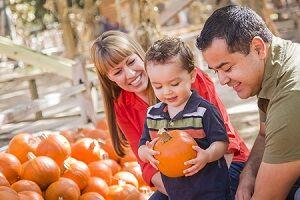 Fun Pumpkin Patch near Ventura