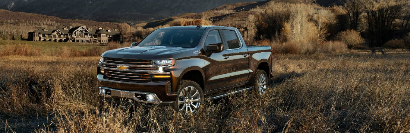 brown 2019 Chevy Silverado 1500 parked in long grass