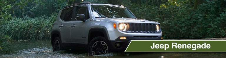 2018 Jeep Renegade in a swamp