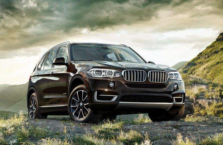 BMW SUV in Burgundy Exterior View