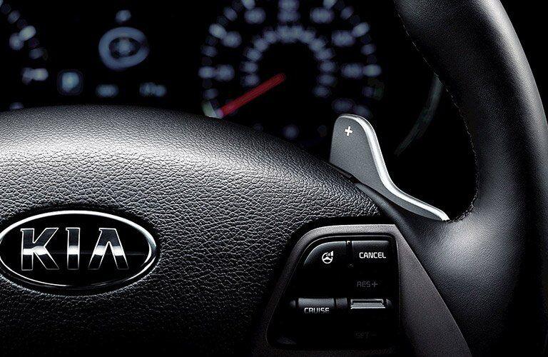 Close-up of steering wheel on 2017 Kia Forte