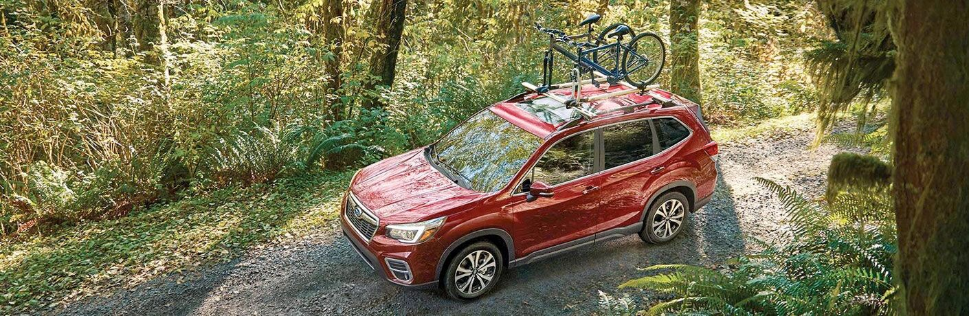 2020 Subaru Forester in forest