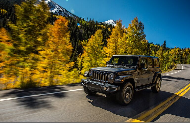black jeep wrangler on road by trees