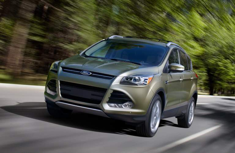 Gold 2013 Ford Escape Driving by a Forest