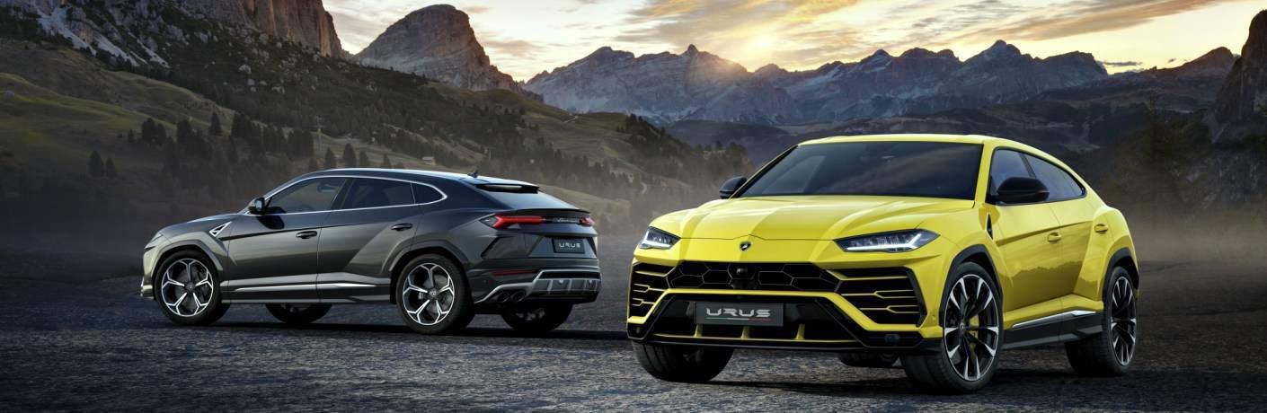 Lamborghini Urus yellow and black side by side