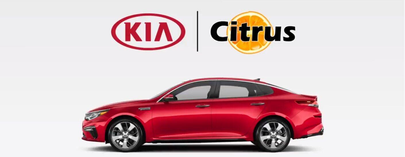 Citrus Kia Fast Pass with red Kia sedan