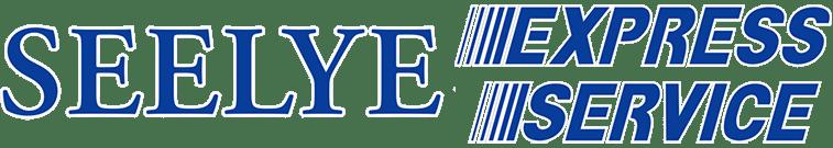 Seelye Service Logo