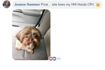 "Picture of dog named Pixie with text saying ""joanna Hammer. Pixie... she loves my HHI Honda CRV."