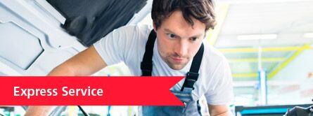 mechanic working, express service link