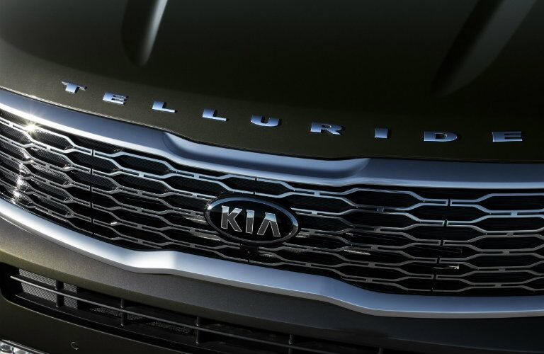 Front grille and badging of the 2020 Kia Telluride
