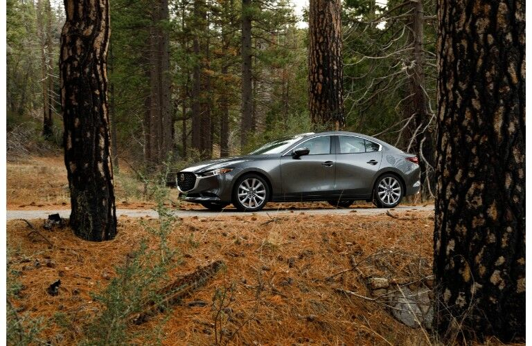 2019 Mazda3 sedan exterior side shot with gray metallic paint color parked on a forest path between a wilderness of brown grass and trees