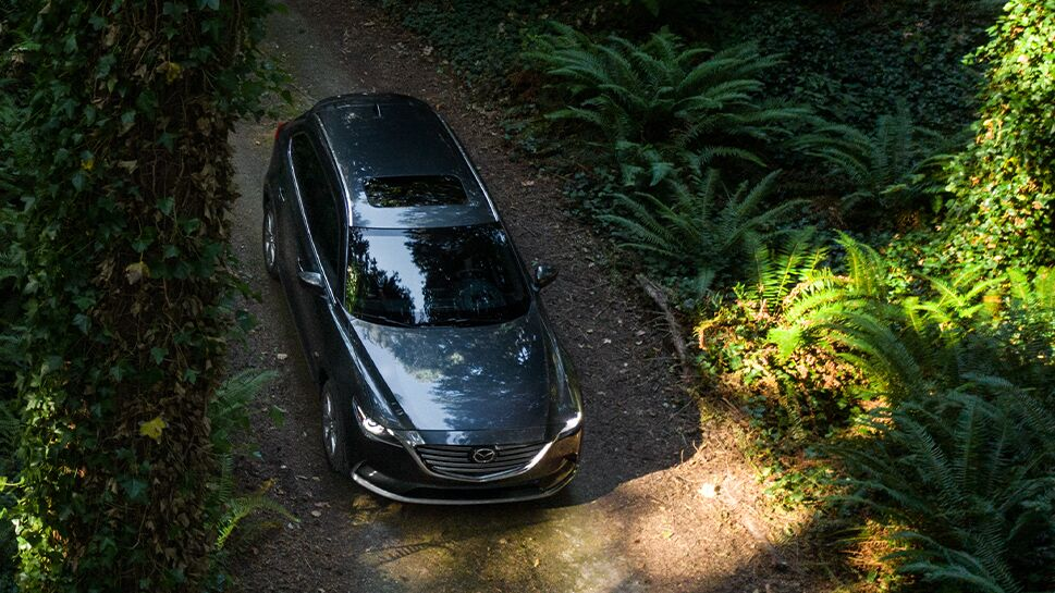 The top view of a gray 2020 Mazda CX-9 driving off-road in a forest.