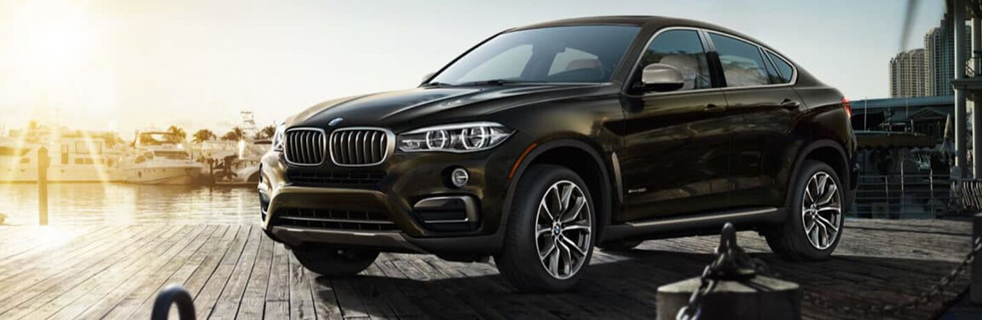 2019 BMW X6 brown side view