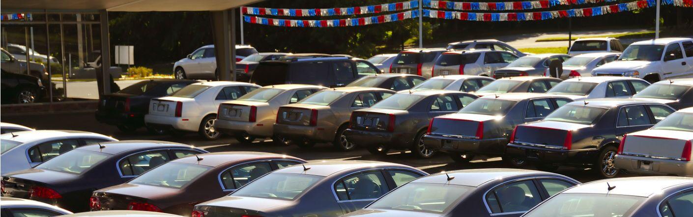 Many vehicles on a sunny dealership lot.